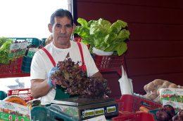 Asociados del Mercadillo del Agricultor, el Vino y la Artesanía de La Matanza de Acentejo