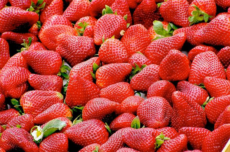 Fresas, Mercadillo de La Matanza de Acentejo.
