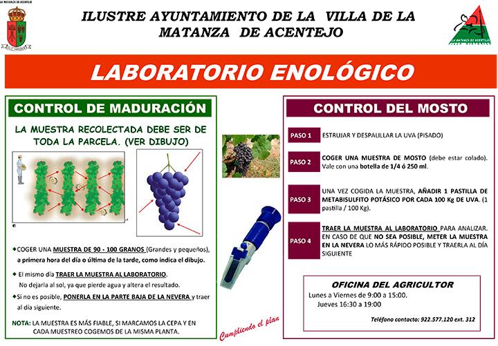 Laboratorio enologico del Mercadillo del Agricultor de La Matanza de Acentejo