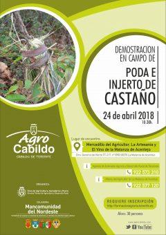 PODA E INJERTO DE CASTAÑOS-2018